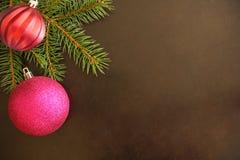 Ramo dell'albero di Natale con la palla ondulata porpora e rossa su un fondo scuro Immagine Stock Libera da Diritti