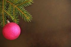 Ramo dell'albero di Natale con la palla porpora Fotografia Stock Libera da Diritti
