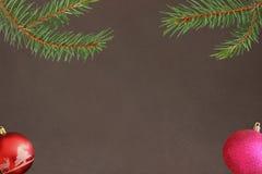 Ramo dell'albero di Natale con la palla rosa e rossa su un fondo scuro Fotografie Stock