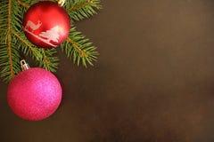 Ramo dell'albero di Natale con la palla rosa e rossa su un fondo scuro Fotografia Stock Libera da Diritti