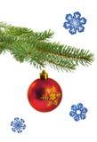 Ramo dell'albero di Natale con la palla rossa Fotografia Stock Libera da Diritti