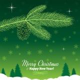 Ramo dell'albero di Natale con la pigna nel verde Immagine Stock Libera da Diritti