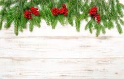Ramo dell'albero di Natale con le bacche rosse su fondo di legno Immagini Stock