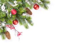 Ramo dell'albero di Natale con neve e le bagattelle fotografie stock libere da diritti