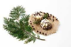 Ramo dell'albero di Natale, dolce, decorazione del nuovo anno su bianco Concetto creativo, spazio per testo, logo Disposizione pi Fotografia Stock Libera da Diritti