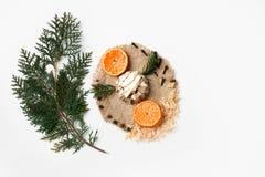 Ramo dell'albero di Natale, dolce, sloce della decorazione arancio del nuovo anno su bianco Concetto creativo, spazio per testo Fotografie Stock Libere da Diritti
