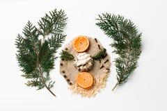 Ramo dell'albero di Natale, dolce, sloce della decorazione arancio del nuovo anno su bianco Concetto creativo, spazio per testo Fotografia Stock Libera da Diritti