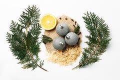 Ramo dell'albero di Natale, limone, palle della decorazione del nuovo anno su bianco Concetto creativo, spazio per testo, logo pi Fotografie Stock Libere da Diritti