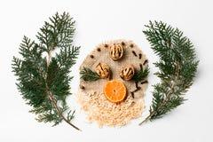 Ramo dell'albero di Natale, noci, fetta di decorazione del nuovo anno del mandarino su bianco Concetto creativo, spazio per Fotografie Stock