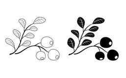 Ramo dell'uva di monte - il nero Royalty Illustrazione gratis