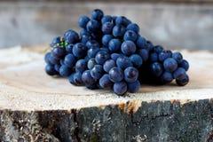 Ramo dell'uva organica matura immagine stock libera da diritti