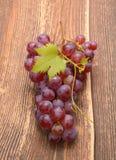 Ramo dell'uva organica matura Fotografie Stock