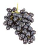 Ramo dell'uva su un fondo bianco Fotografia Stock