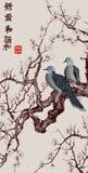 Ramo della ciliegia di Sakura Giappone Fotografia Stock Libera da Diritti