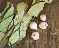 Ramo della foglia e dell'aglio di alloro su vecchio fondo di legno scuro con lo spazio della copia Fotografia Stock