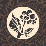 Ramo della pianta del caffè con le foglie ed i fagioli Siluetta di vettore Simbolo Immagini Stock Libere da Diritti
