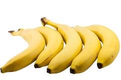 Ramo delle banane Immagini Stock