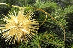 Ramo di albero con la decorazione Carte del nuovo anno o di Natale Fotografia Stock Libera da Diritti