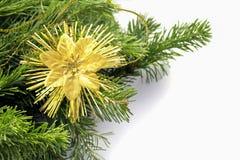 Ramo di albero con la decorazione Carte del nuovo anno o di Natale Fotografie Stock Libere da Diritti