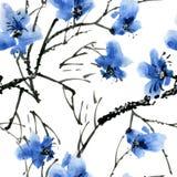 Ramo di albero del fiore Immagine Stock Libera da Diritti