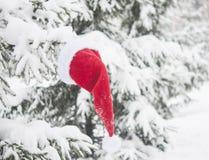 ramo di albero dell'abete e cappello di Santa con neve fotografie stock