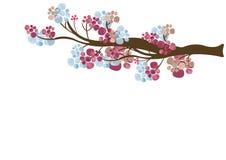 Ramo di albero floreale Fotografia Stock Libera da Diritti