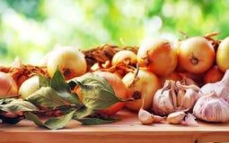 Ramo di alloro, di aglio e delle cipolle Fotografia Stock Libera da Diritti