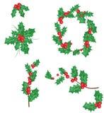 Ramo di ilex con la bacca e le foglie, insieme del vischio Il simbolo di natale e del nuovo anno, vettore ha isolato attingere il Fotografia Stock Libera da Diritti