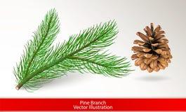 Ramo di pino verde realistico e cono marrone isolati su fondo bianco Imposti per il disegno Illustrazione di vettore fotografia stock libera da diritti