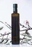Ramo di ulivo e una bottiglia dell'olio di oliva Fotografia Stock