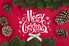 Ramo do abeto do Natal Fotografia de Stock Royalty Free
