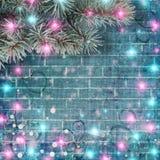 Ramo do abeto vermelho com festões e luzes brilhantes Fotografia de Stock Royalty Free
