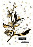 Ramo do café com folhas e feijões de café Desenho botânico do contorno Estilo retro de memphis, pop art Molde do vetor Fotos de Stock Royalty Free