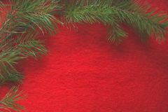 Ramo do pinho no fundo de lã vermelho foto de stock royalty free