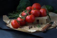 Ramo do tomate no fundo preto imagens de stock
