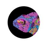 Ramo dos detalhes dos gráficos de cor do desenho do lagarto do camaleão ilustração stock