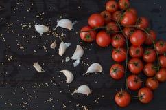 Ramo dos tomates e do alho com especiarias derramadas Fotos de Stock