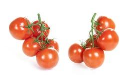 Ramo dos tomates no branco Fotos de Stock Royalty Free