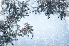 Ramo e precipitazioni nevose del pino dell'albero di Natale sul fondo del cielo Immagini Stock