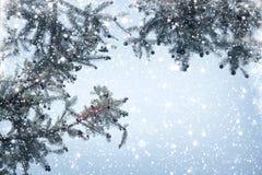 Ramo e queda de neve do pinho da árvore de Natal no fundo do céu Imagens de Stock