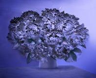 Ramo enorme de peonías blancas fragantes Imagen de archivo libre de regalías