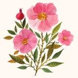 Ramo floral Foto de archivo libre de regalías