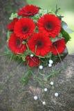 Ramo floral con las margaritas rojas del gerbera Foto de archivo
