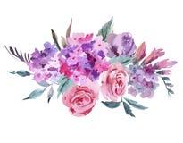 Ramo floral con las rosas rosadas, hortensia de la acuarela stock de ilustración