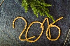 Ramo fresco da árvore de Natal e os números 2016 de corda em t Fotografia de Stock Royalty Free