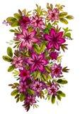 Ramo hermoso con las flores rosadas libre illustration