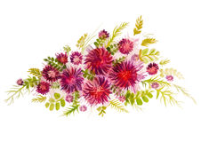Ramo hermoso de flores rojas ilustración del vector