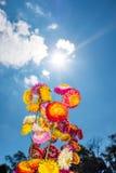 Ramo hermoso de flores secas coloridas de la paja o de w eterno Imagen de archivo