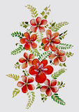 Ramo hermoso de la acuarela de flores stock de ilustración