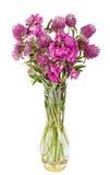 Ramo hermoso de las flores salvajes Wildflowers en florero Imágenes de archivo libres de regalías